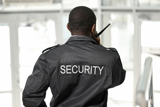 What Are the Ethical Standards of Security Guards in Santee, CA