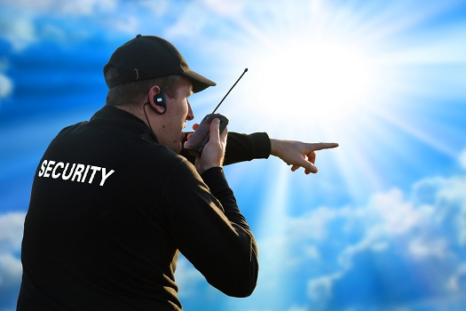 What Does an Event Security Guard Do in Santee, CA
